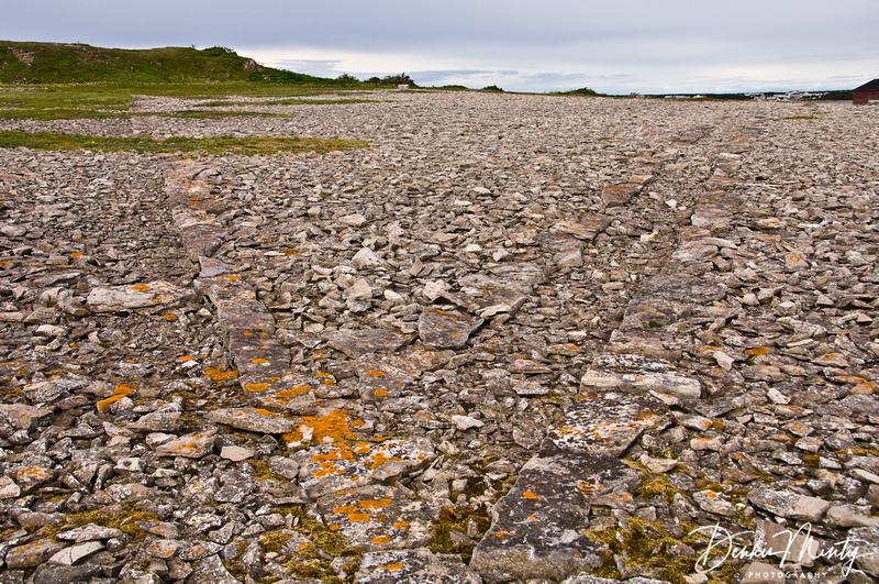 Stone Pathways, Old Ferolle Island